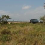 Expedičné vozidlo na vtáčom safari